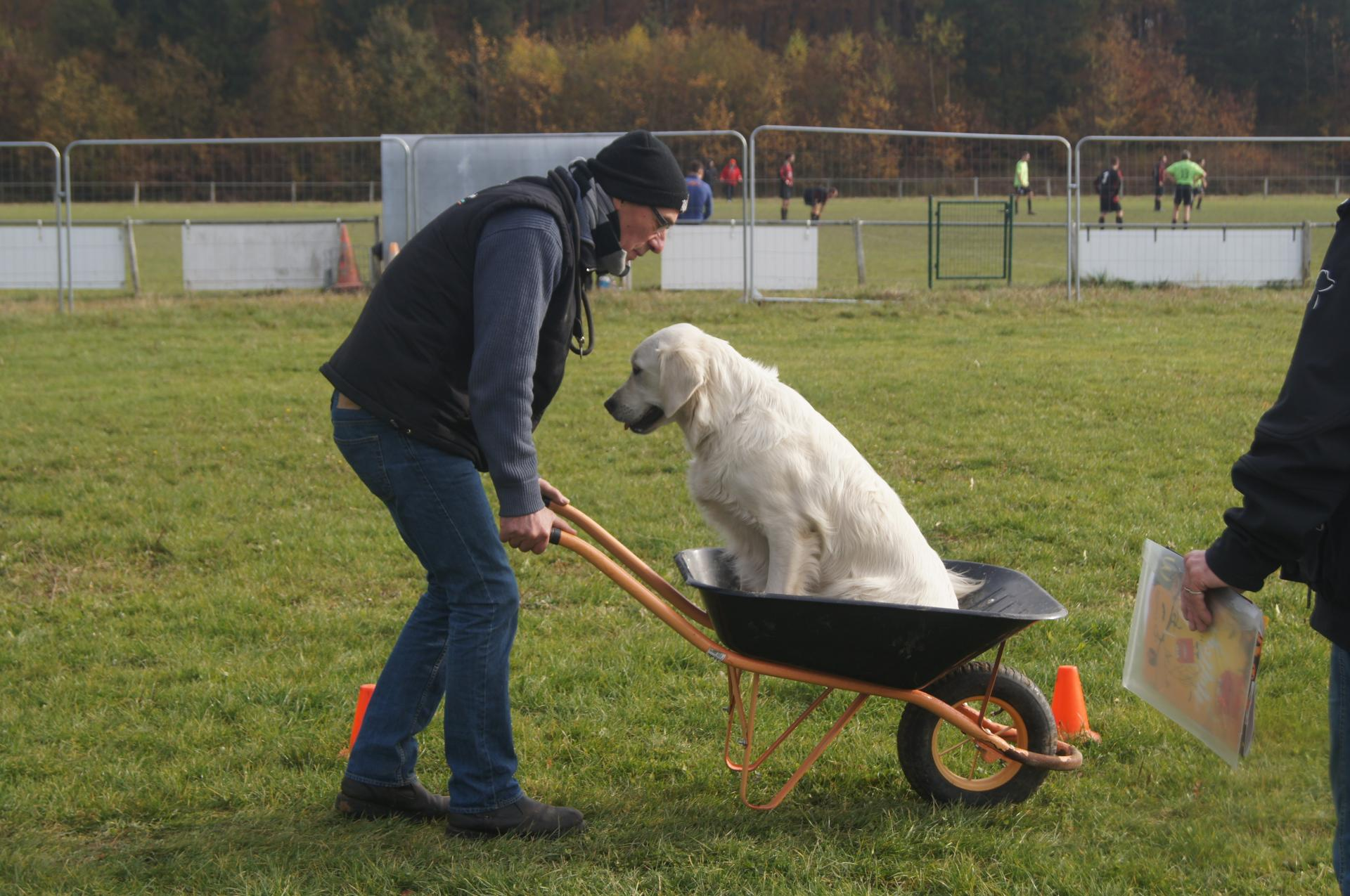 SPORTS CANINS DE BRECHAUMONT